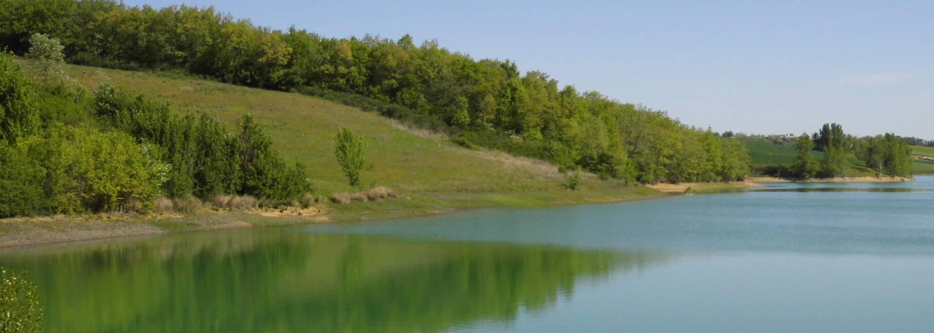 Lac de Pellefigue, Savès