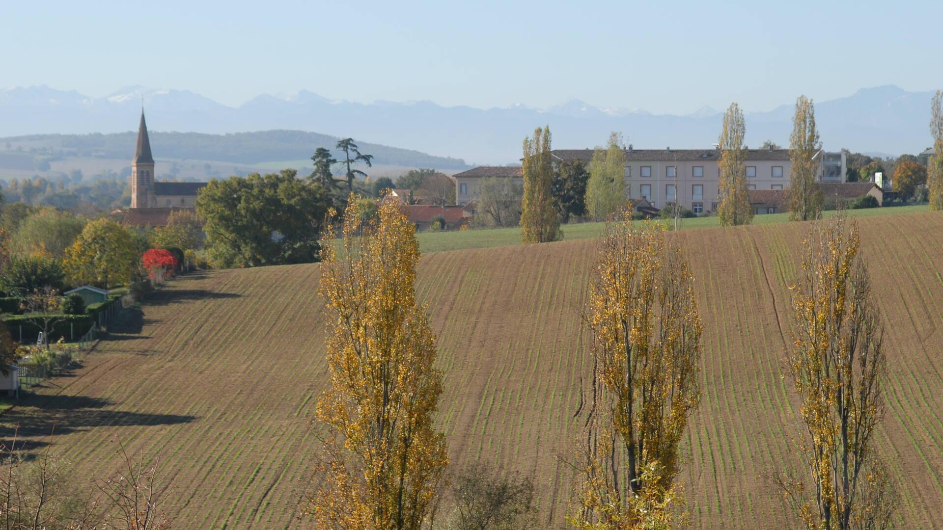 Vue sur les Pyrénées et champs, Savès