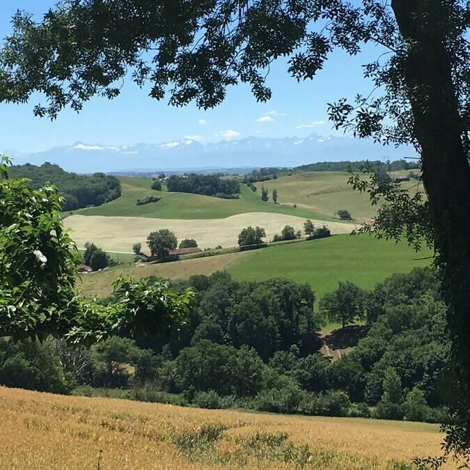 Vue sur les Pyrénées, Montamat, Savès